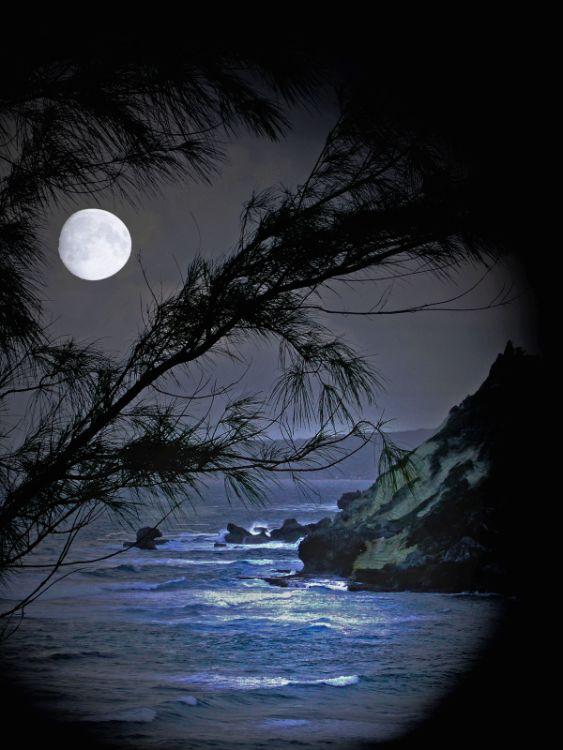 AngelaMulligan moonlit sky LandscapeofYr