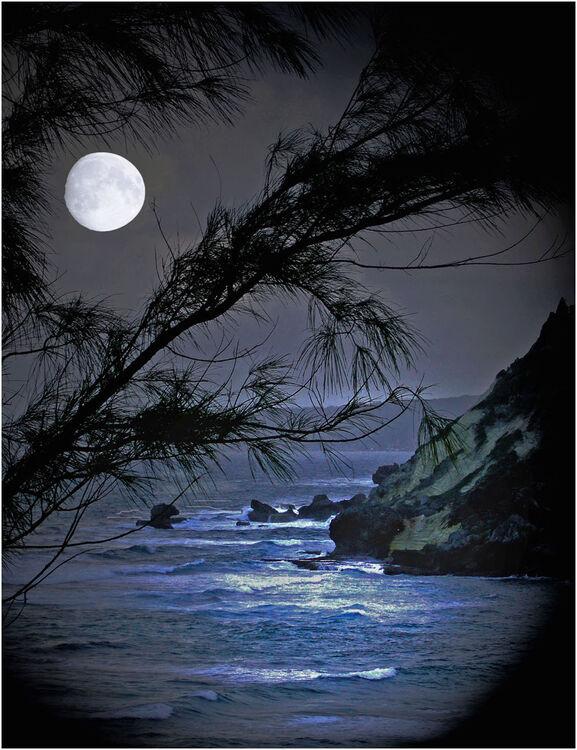 1b Moonlight L IWPS