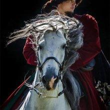 Anne Dziedzicki Rider IWPS M6