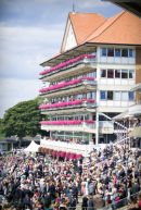 York Race course