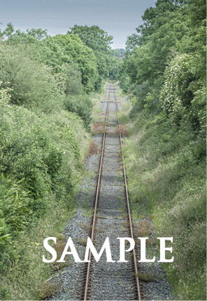 Along the Track Sample