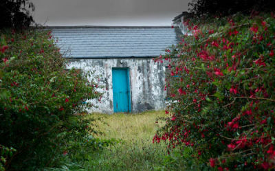 Blue Door Donegal