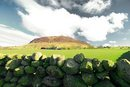 Slemish Mountain Plateau