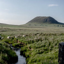 Slemish Mountain in Summer 2