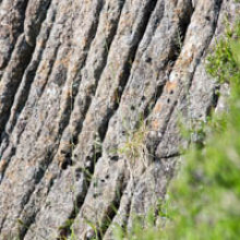 Slemish Rock