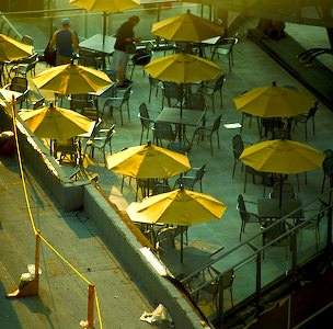 The Yellow Umbrellas