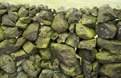 The Slemish Stone