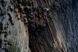 Volcanic rocks(1)