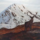 'Ben Stack' Stag