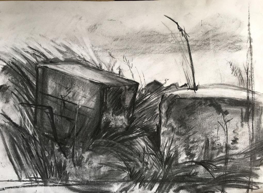 Tank Traps - Walberswick beach