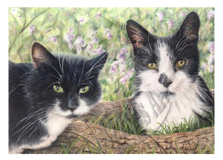 'Diggy and Basil' Card