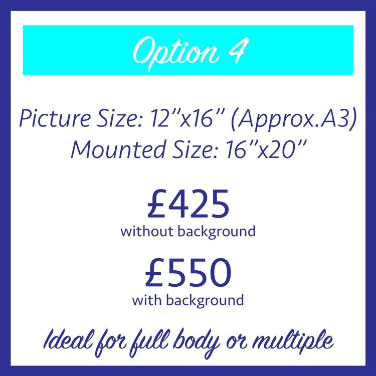Commission price 4 correct