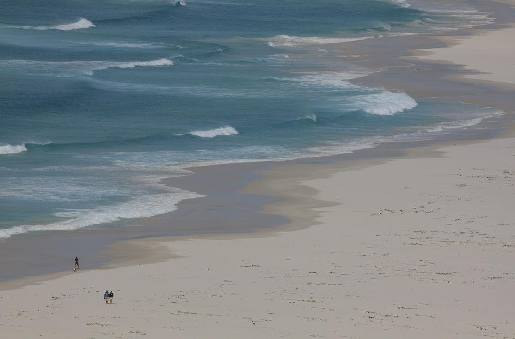 Beach Walkers