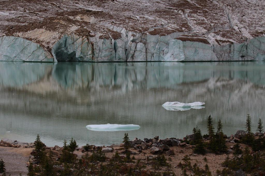 Angel Glacier (Jasper, Alberta)