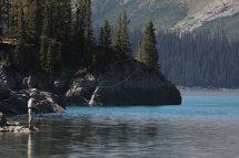 Trout Fishing (Sprey Lakes)