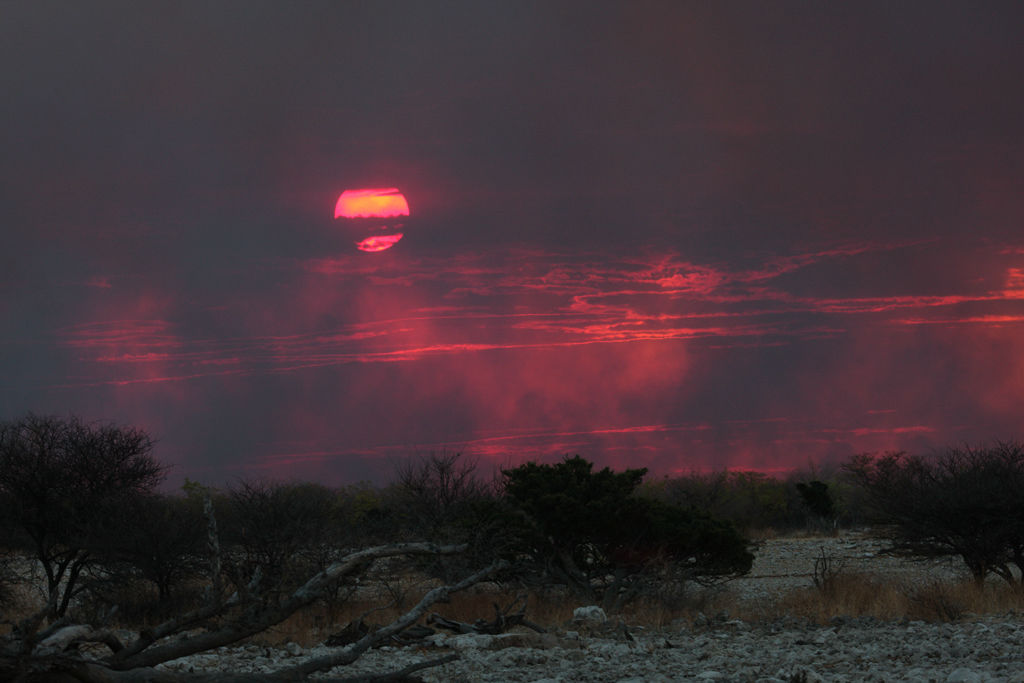 Sunset through fire smoke