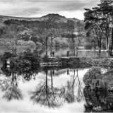 Burrator Reflection