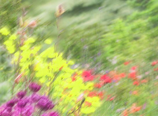 2 - Windy Garden House 1