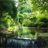 Lukesland Gardens by Ian Clements