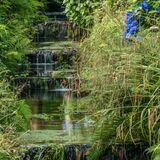 Lukesland Gardens by Ross Marven