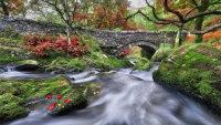 Afon Gwyrfai