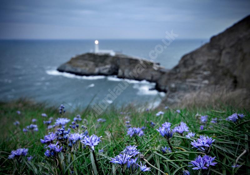 Goleudy Ynys Lawd/South Stack Lighthouse