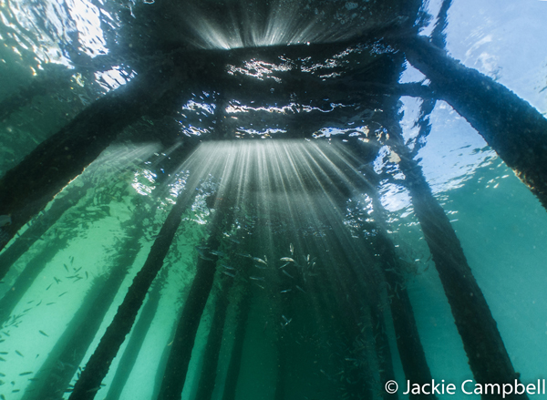 Lightbeams under the jetty, Raja Ampat, Indonesia
