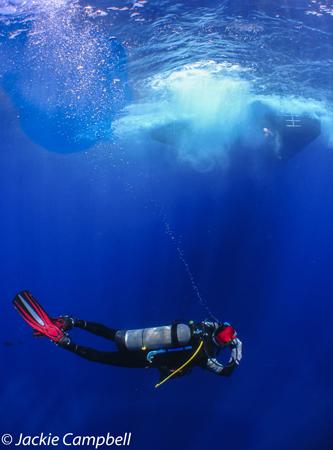 Diver under the boat, Red Sea, Sudan