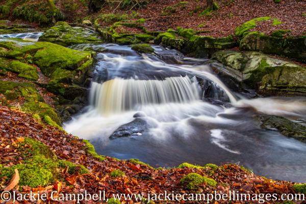 Cloughleigh in autumn, Wicklow, Ireland