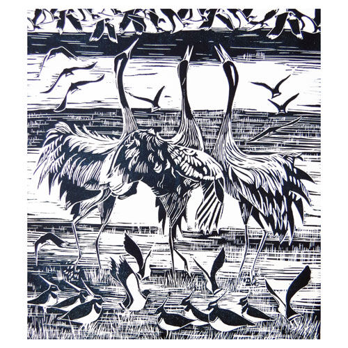 Cranes and Lapwings Cards