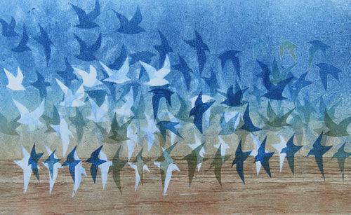 Dunlin Flocks