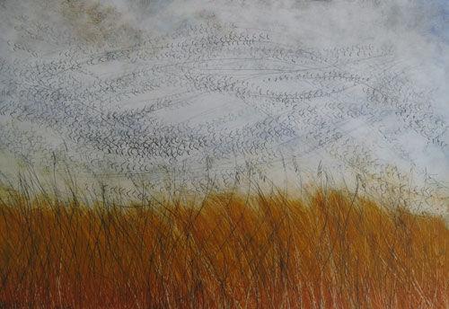 Dusk Starlings