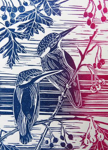 Kingfishers in Hawthorn