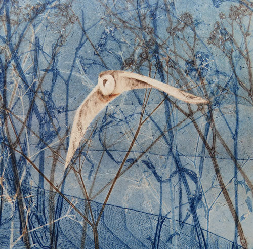 Winter Flight Barn Owl