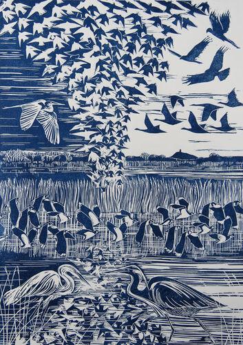 Energy of Starlings