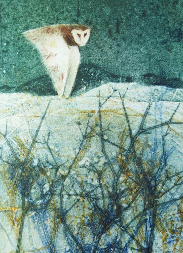 Owl over meadow cards