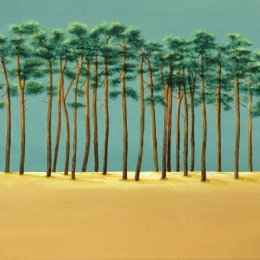 '21 Scots Pine Trees'  SOLD