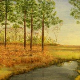 'Winter Pond on Ashdown'