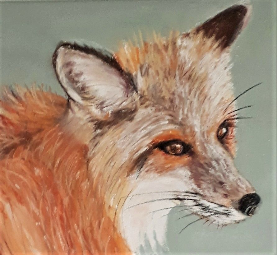 scruffy fox - SOLD