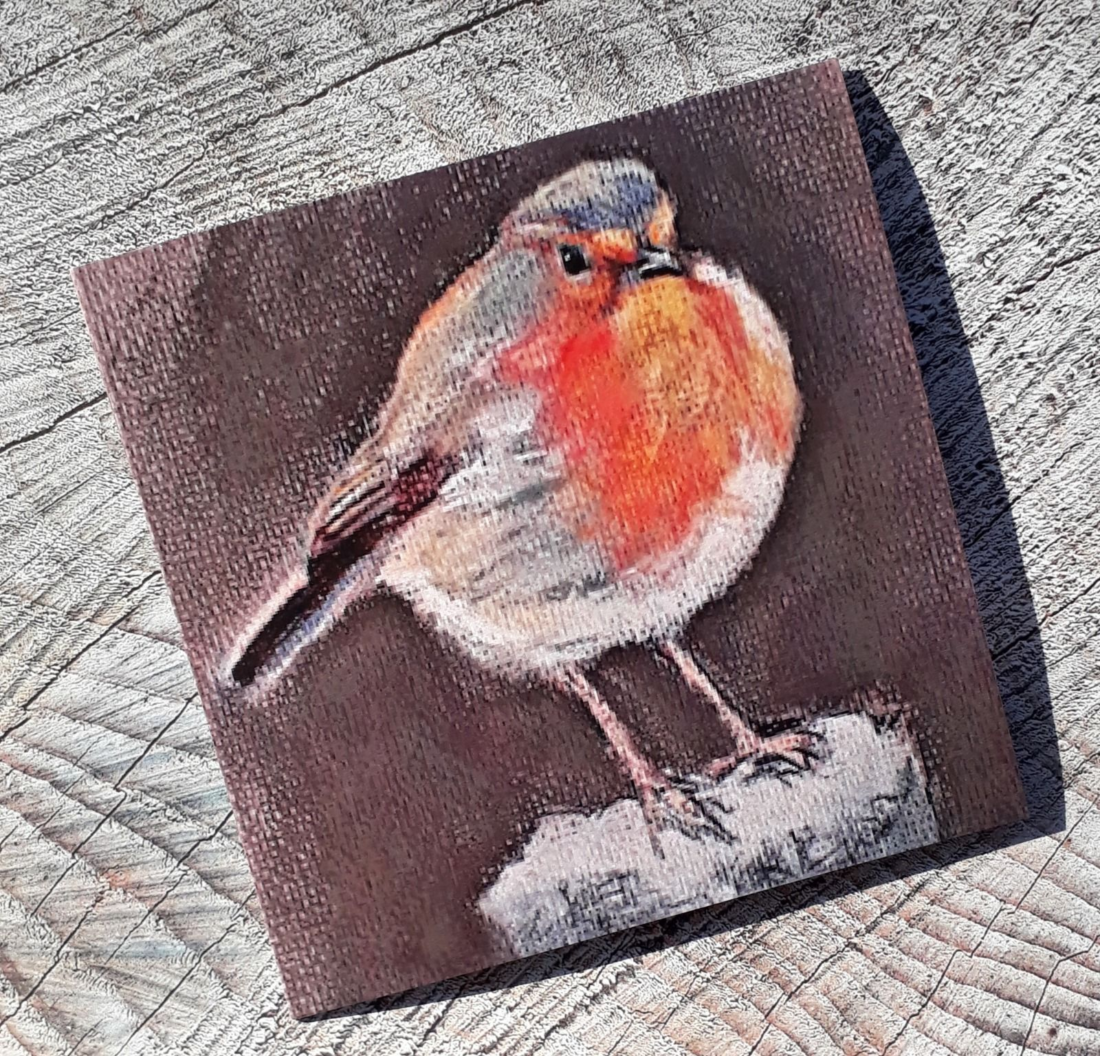 Winter robin SORRY SOLD OUT