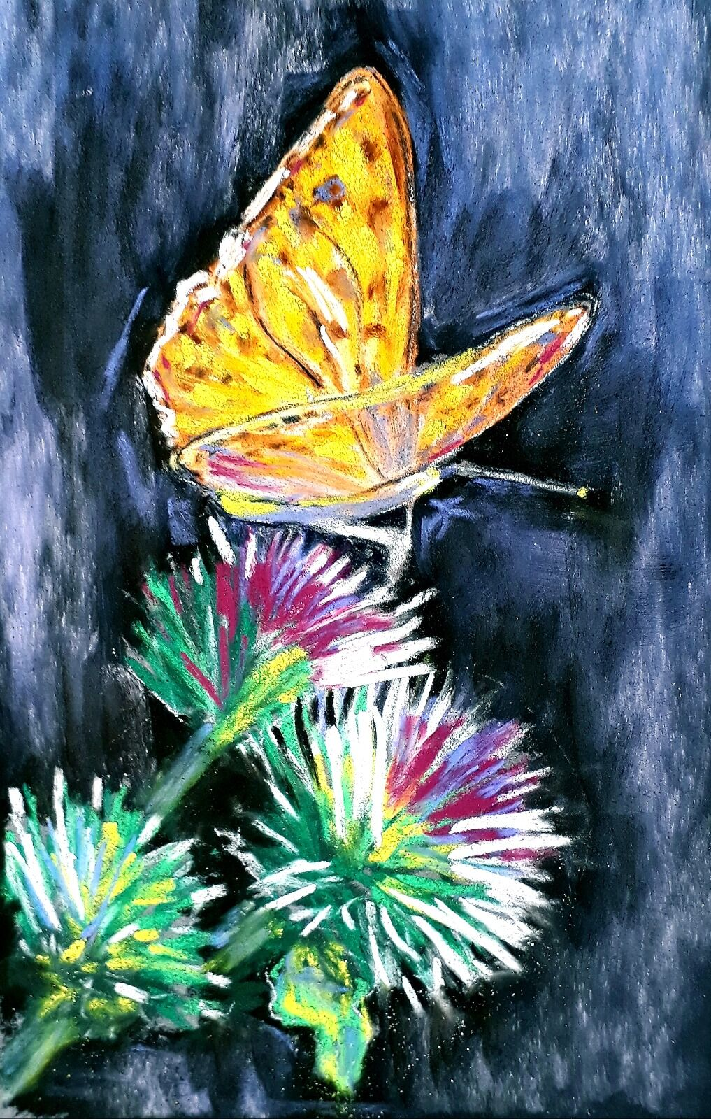 Butterfly on thistle    SOLD