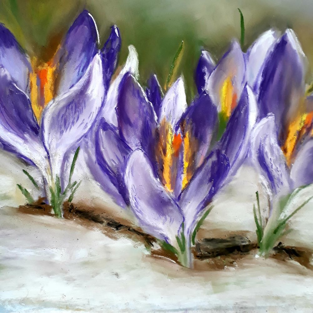 SORRY SOLD OUT crocus print