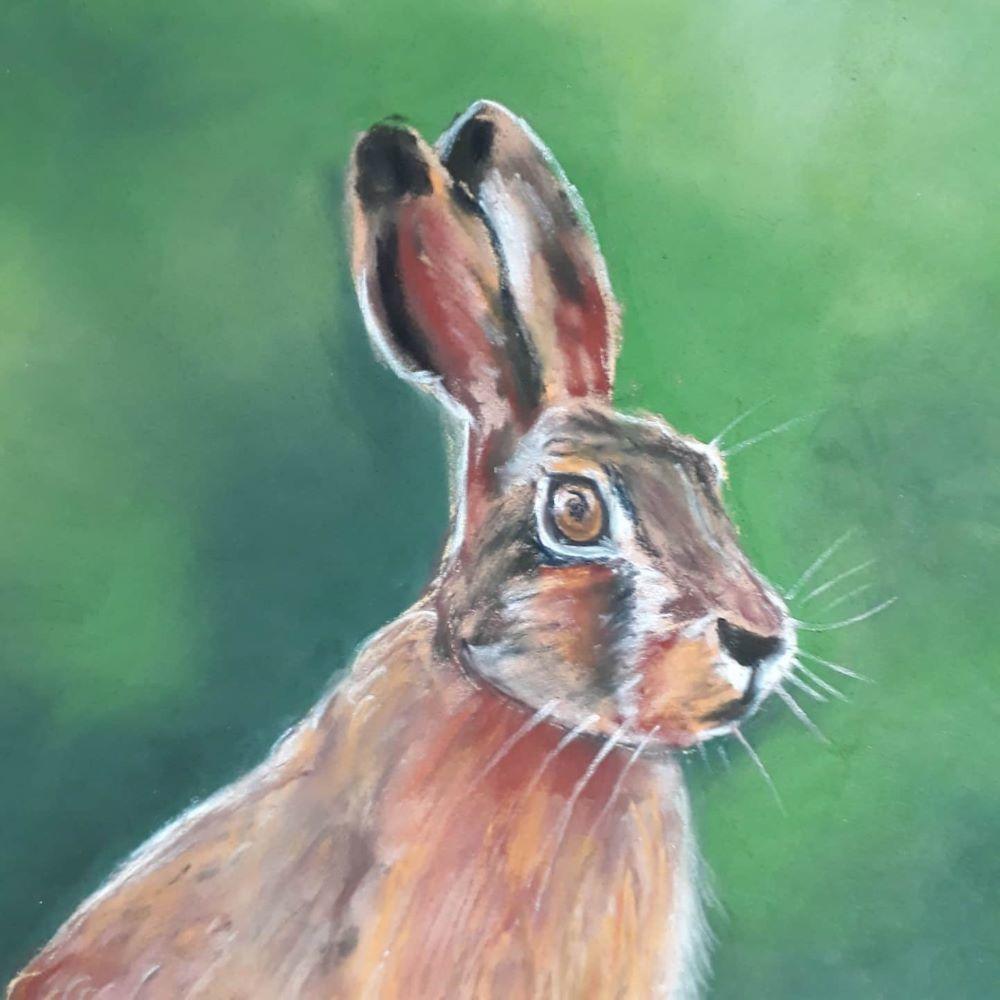 Norfolk hare print