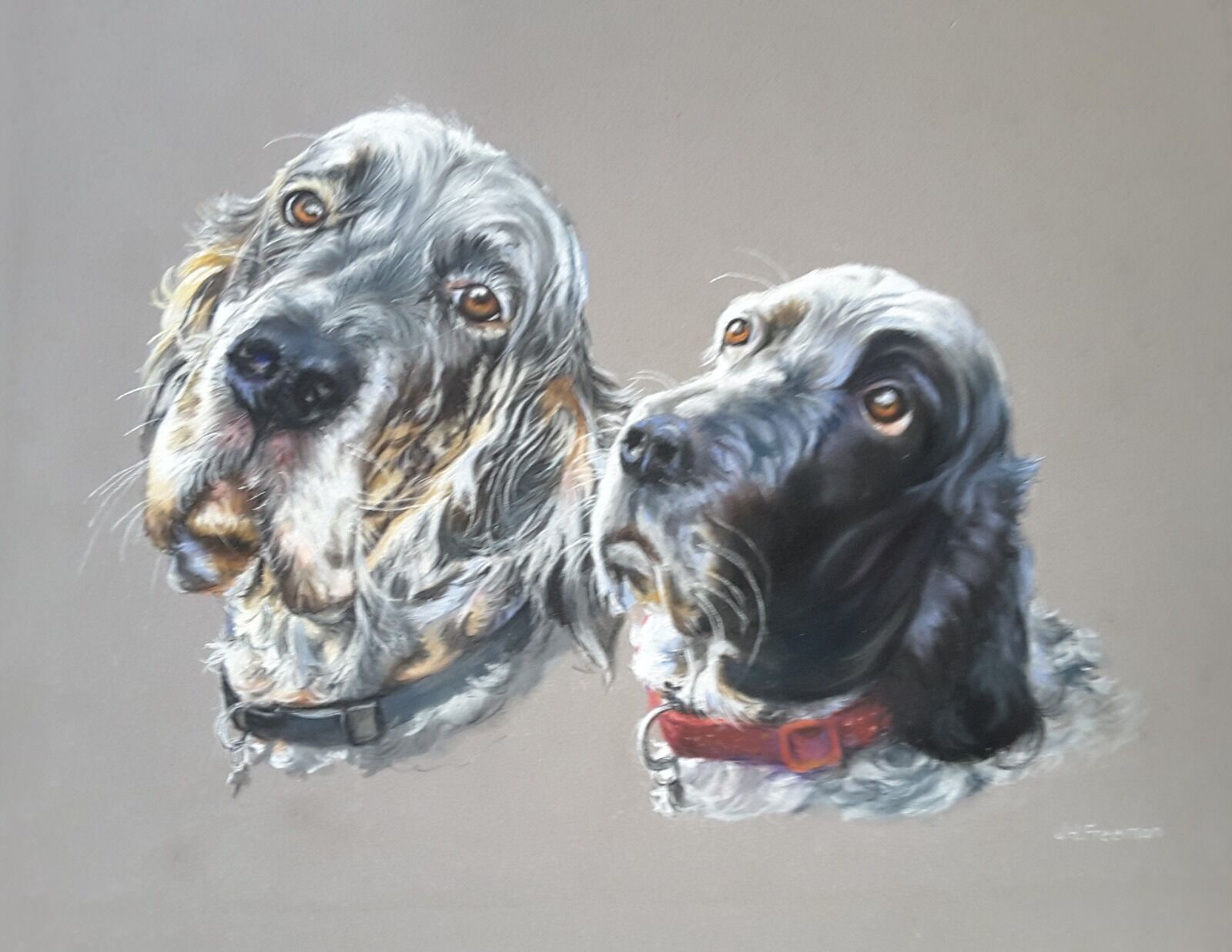 English Setters in pastel