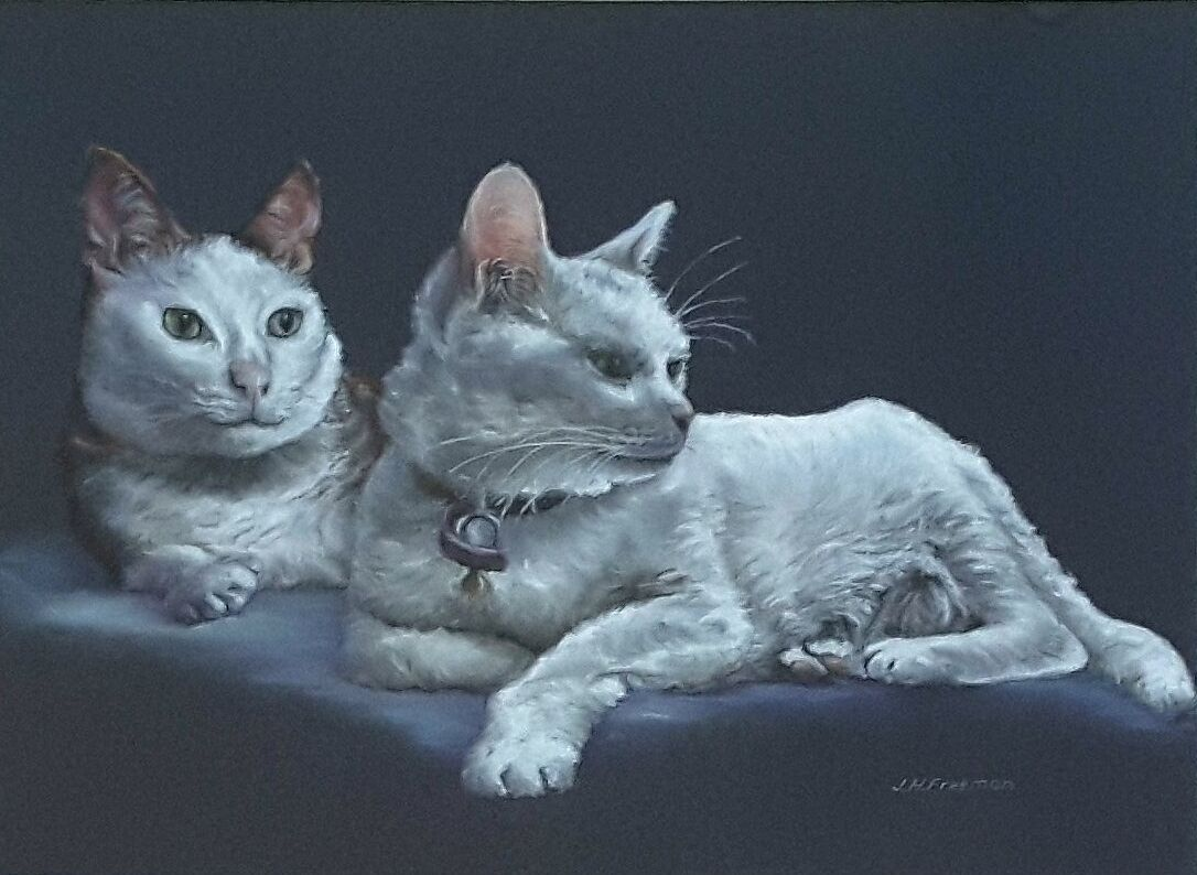 """""""Cats at rest"""" in pastel"""