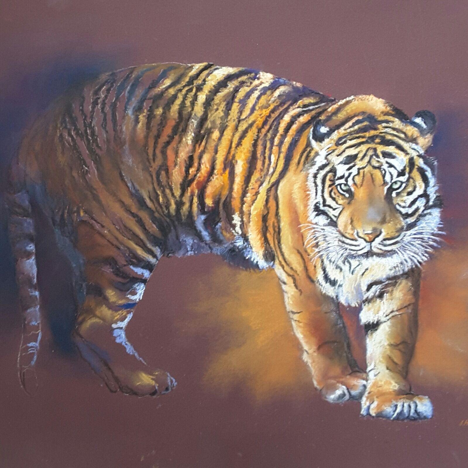 """""""Tiger tiger, burning bright """""""