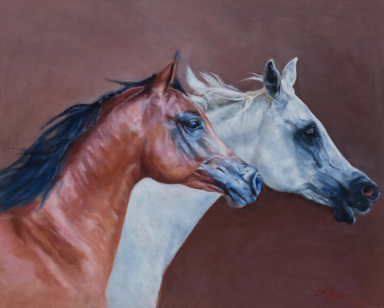 two arab horses in profile horse equestrian painting jacqueline mcateer