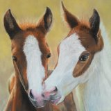 Two Foals - Pastels