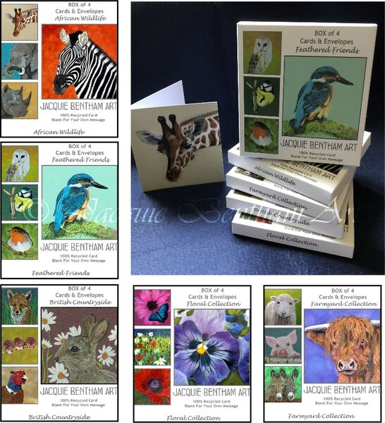 Boxed Set of 4 Cards