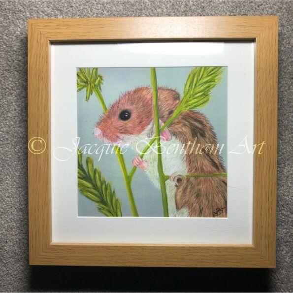 Framed Pastel Prints